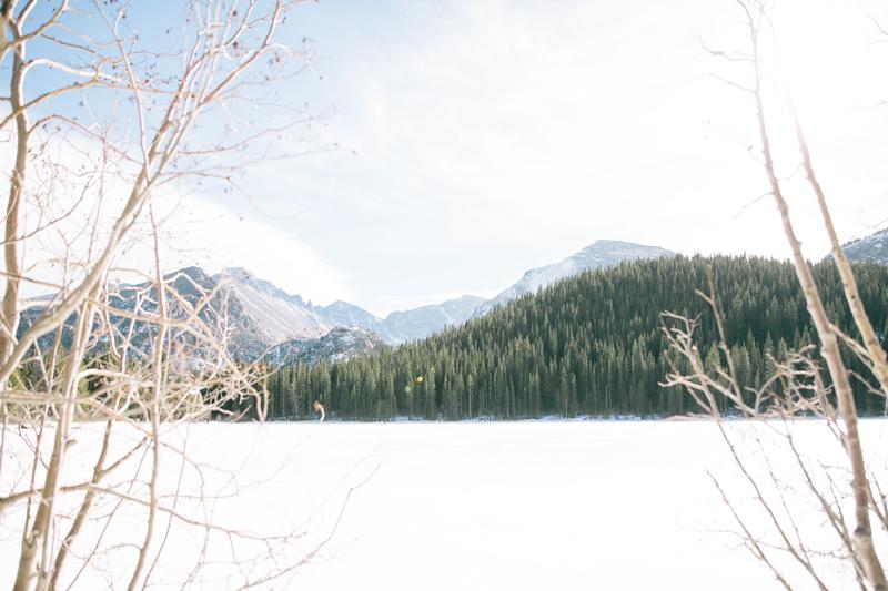 mountain-ice-trees